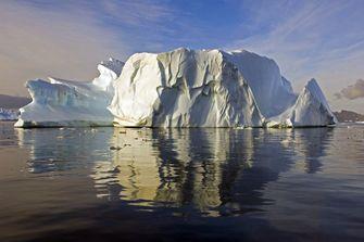 Steeds meer 'groene sneeuw' op Antarctica