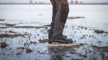 Een schaatser kijkt bij de Ryptsjerksterpolder of het ijs sterk genoeg is.