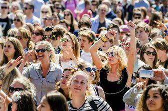 festivals, kabinet, eendaagse festivals