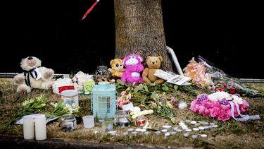 Verbijstering over jonge verdachten moordzaken