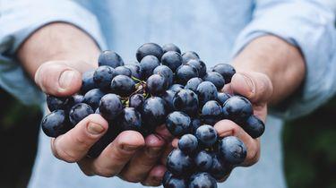 We moeten meer fruit eten en wel hierom