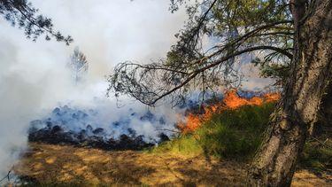 Meerdere bosbranden op de Veluwe