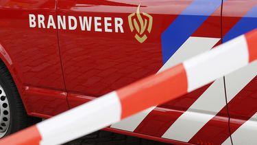 Auto belandt te water, bestuurder kan nog wel zijn hond redden