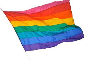 Malta eerste Europese land dat homotherapie verbiedt