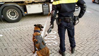 Hondentraining met stroomstoten vanaf 1 juli 2021 verboden.