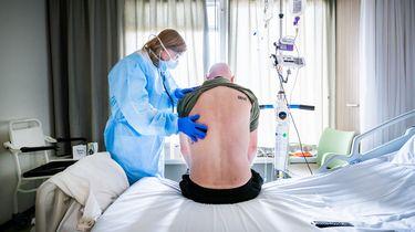 Een antilichaam is een belangrijk onderdeel van een medicijn