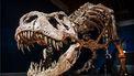 T-rex Trix is terug!