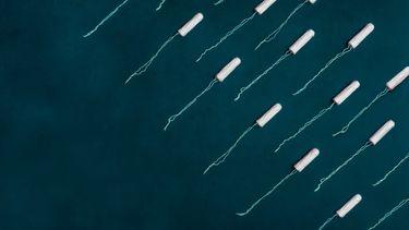 In Nieuw-Zeeland krijgen meisjes gratis menstruatieproducten op school