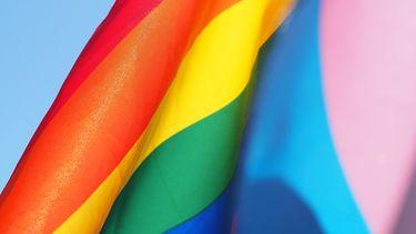 Een regenboogvlag.