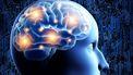 Een foto van het brein driedemensionaal
