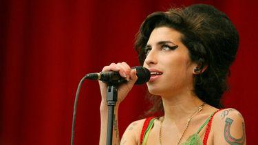 Amy Winehouse jurk veiling