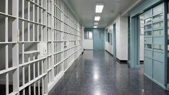 Appje kost stagiair in gevangenis mogelijk 50.000 euro