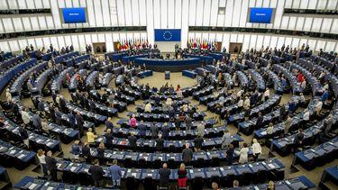 Hoe werkt het nou precies, dat Europees Parlement?
