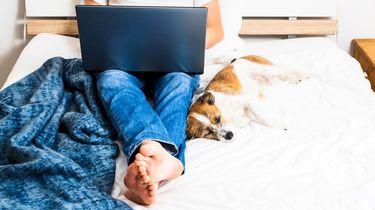 Ontspannen thuiswerken? Kijk uit: misschien bespioneert de baas je