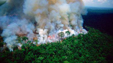 Druk op Bolsonaro om Amazonebranden neemt toe
