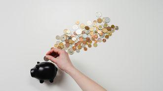 spaarvarken waar geld in wordt gedaan