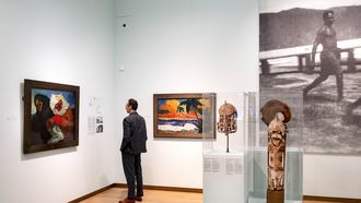 musea, bezoeken, corona