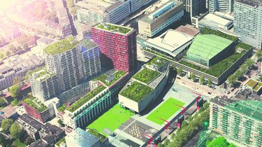 Initiatief Theater Rotterdam maakt Schouwburgplein klimaatneutraal