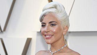 Met geweld ontvoerde honden Lady Gaga teruggevonden