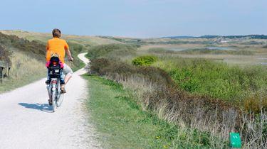 Op de foto een fietser in de zon