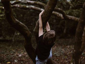 jaren '80 boom klimmen