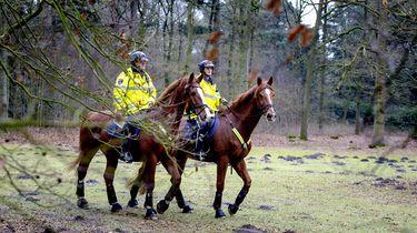 Fietser in gezicht getrapt door politiepaard
