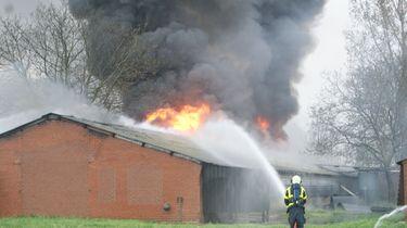 Cel- en taakstraf voor brandstichting kippenschuren