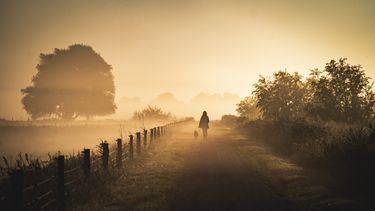 Mist, herfstweer, weer