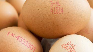 Het eerste CO2-neutrale ei van Nederland