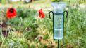 Een foto van een regenmeter in de tuin, het KNMI levert deze