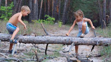 Een foto van drukke kinderen aan het spelen in het bos