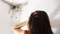Vochtproblemen of schimmel in je woning? Dit kun je doen