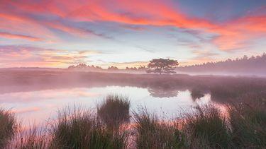 Op deze foto zie je een prachtige zonsopkomst bij een meer in National Park De Hoge Veluwe.