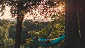 iemand relaxt in hangmat door 4-daagse werkweek
