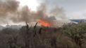 VIDEO: Passagier filmde vliegtuigcrash Mexico