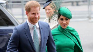 Volgens bronnen hebben Harry en Meghan veel vertrouwen in de beveiliging.