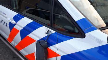 Vandalen vernielen politieauto's na inval bij verboden bosfeest