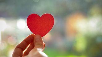 vrijgezel liefde
