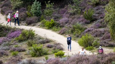 Een foto van mensen die wandelen in de natuur