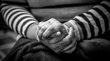 Zak met meer dan 50 afgehakte handen gevonden. / Jorge Lopez, Unsplash