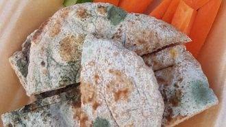 Pitt-ig: restaurant serveerde beschimmeld pitabrood