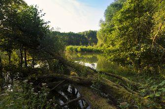25 dingen die je (misschien) niet wist over Almere