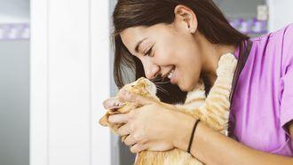 Studie bewijst: kat knuffelt liever dan dat het eet