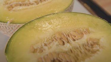 Meloen fruit Yubari Japan