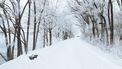 Sneeuw in Nederland dit weekend, tot 20 cm