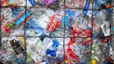 Rivieroevers Nederland erg vervuild met plastic