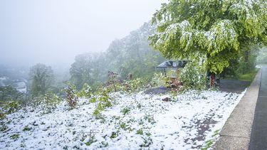 Een foto van sneeuw in Limburg