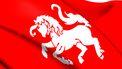 Foto van de vlag van Twente
