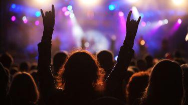 Knul verandert Wikipedia om favoriete band te zien