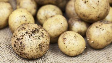 Foto van aardappels
